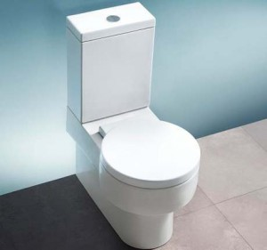 Caroma 810266W Brisbane 270 Round Front Plus Standard Height,Tank Bowl and Seat, White