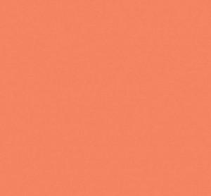 """Ceramic Tiles for Wall,""""Chez moi"""" Portobello Coquelicot 01 (4""""x8"""")"""