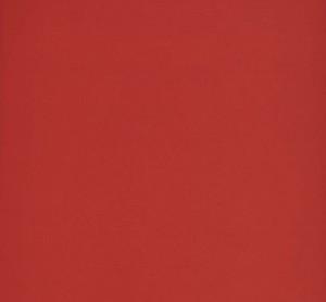 "Ceramic Tiles for Wall, Design Positive EpocaLoft red (8""x20"")"