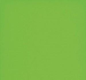 "Ceramic Tiles for Wall, Design Positive EpocaLoft Green (8""x20"")"
