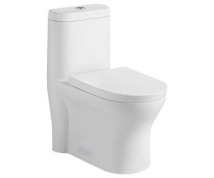 "One Piece Toilet Dual Flush (27.36""x14.17""x29.92"")"