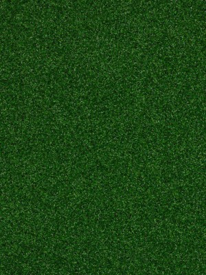 SHAW Park Central Infield Turf Carpet   TURF-LAUNCH-00300