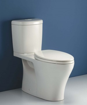 Caroma 829108W Somerton Smart 270 Easy Height Elongated, White Tank Bowl and Seat