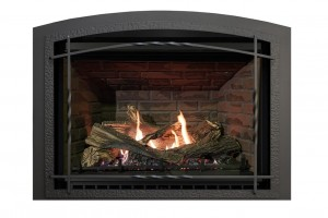 "Archgard 37-DVTE30 Gas Fireplace (33-5/16"" H x 24"" W)"