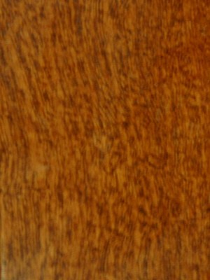 "Sunca Jatoba Exotic Wood Select & Better Caramel (3-1/4"" x 3/4"")"