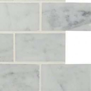 Interlocking Ceramic,Carrara White 2x4 Polished(SMOT-CAR-2X4P)