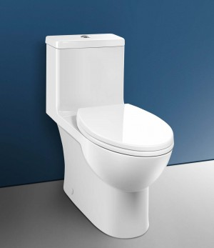 Caroma 989900 Caravelle Smart 270 One Piece Toilet and Seat Easy Height Elongated, White