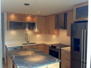 Contemporary Style Kitchen With Frosted Glass Cabinet In Over The Sink And In The Over Fridge